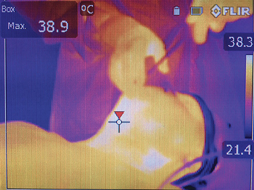 thermal-image-1_500w